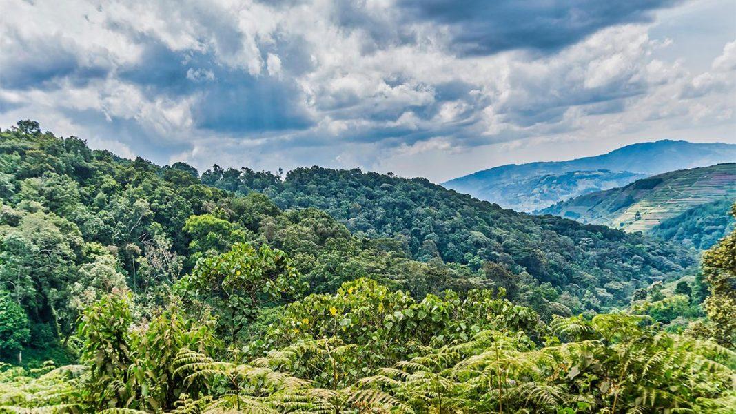 Uganda's Rural Countryside