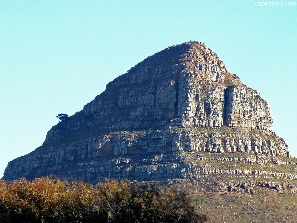Lion Head Cape Town